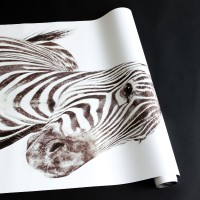 Papel Magnético Zebra